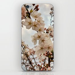 Vintage Cherry Blossoms iPhone Skin