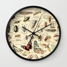 Vintage Insect Identification Chart // Arthropodes by Adolphe Millot XL 19th Century Science Artwork Wall Clock