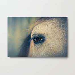 Gentle Horse Eye Photograph By Priya Ghose Metal Print