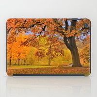 wes anderson iPad Cases featuring Fall at Larz Anderson by LudaNayvelt