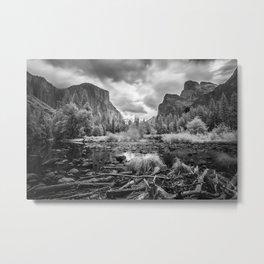 Grey Day Metal Print