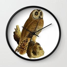 Cape-eared Owl Wall Clock