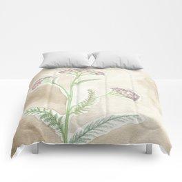 Pink Yarrow Comforters
