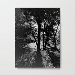 Rift. Metal Print