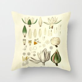 Waterlily Botanical Art Print  Throw Pillow