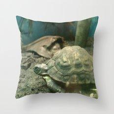 Giant Turtle Throw Pillow