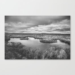 Iceland wetlands Canvas Print