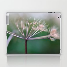 Yarrow Laptop & iPad Skin
