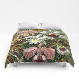 Vintage Orchid Floral Comforters