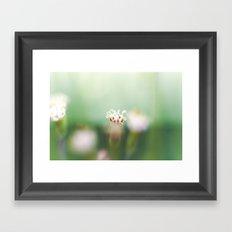 Flower Wheel Framed Art Print