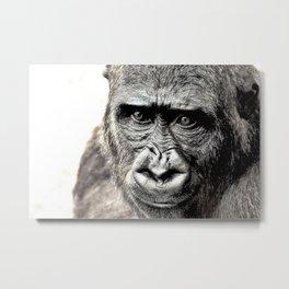 Gorilla Sketch Metal Print