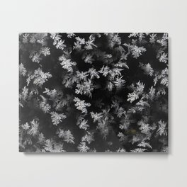 Ice Effect Metal Print