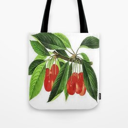 Red Cherries Vector on White Background Tote Bag