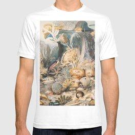 Ocean Life by James M. Sommerville T-shirt