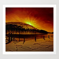 Kings Tree Winter Dawn Art Print