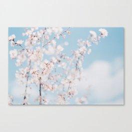 Vienna Summer Blossoms 1 Canvas Print