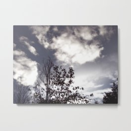 Dream Land Metal Print