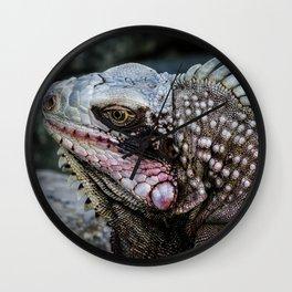 Portrait of an Iguana Wall Clock