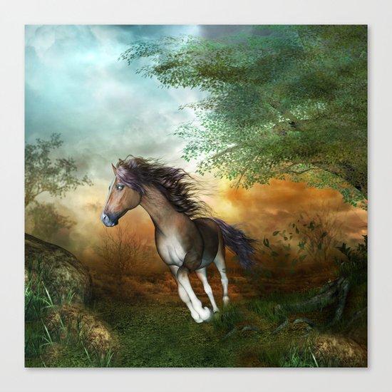 Beautiful brown horse Canvas Print