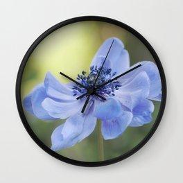Fallen in BLUE - Blue Anemone Flower at Backlight Wall Clock