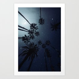 Palm Trees, Night Sky, Stars, Moon Art Print