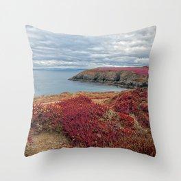 Irish Pomegranate Coast Throw Pillow