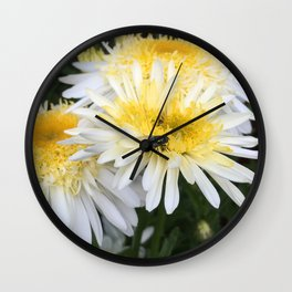 Fly on Aster Wall Clock