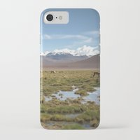 chile iPhone & iPod Cases featuring Oasis in Atacama Desert, Chile by David von Blohn