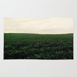 Soybean Skies Rug