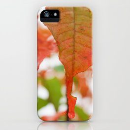 Colorful Leaves with Raindrops iPhone Case