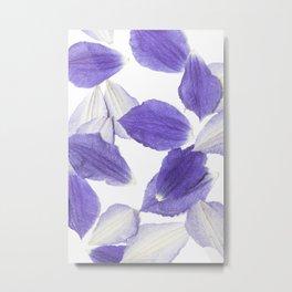 Beautiful Falling Purple Clematis Petals Metal Print