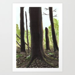 The Woods behind our Home Art Print