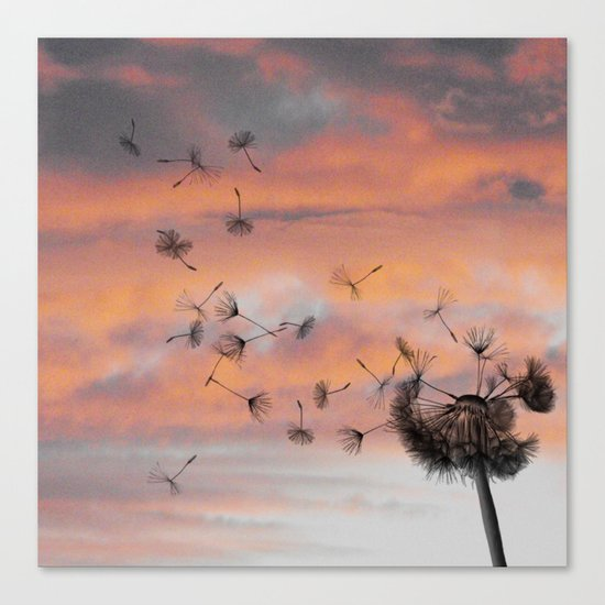 And the days went by Canvas Print