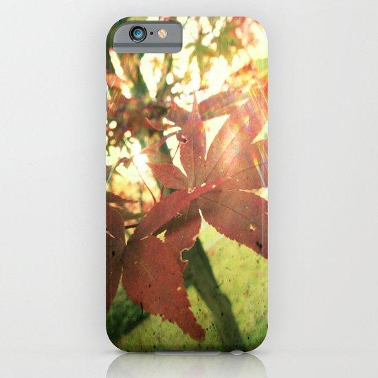 Autumn's Brilliance iPhone & iPod Case