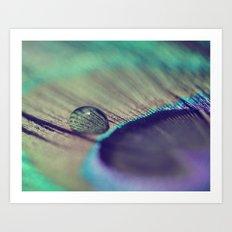A Feather Art Print