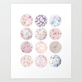 Microbe Collection Art Print
