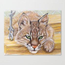 Shamrock Bobcat swing Canvas Print