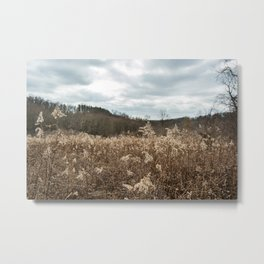 Pleasant Valley Park - Meadow Metal Print