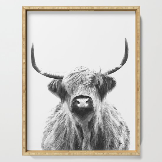 Black and White Highland Cow Portrait by alemi