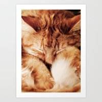 garfield Art Prints featuring Garfield Sleeps by Rachel's Pet Portraits