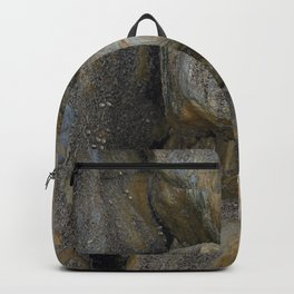Ocean Weathered Coastal Rock Formation Backpack
