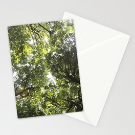 Looking up at the Trees Stationery Cards