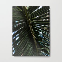 Palm Leaf 13 Metal Print