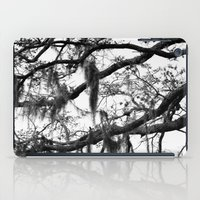 spanish iPad Cases featuring Spanish Moss by MorganLoriPhoto