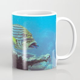 Sweetlips at the cleaning station Coffee Mug