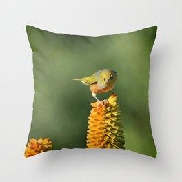 Silvereye King Throw Pillow