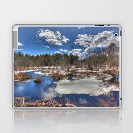 Early Spring Marsh Laptop & iPad Skin