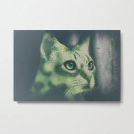Tristan en verde Metal Print