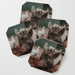 Lucy Coaster