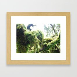 Scottish Moss Framed Art Print